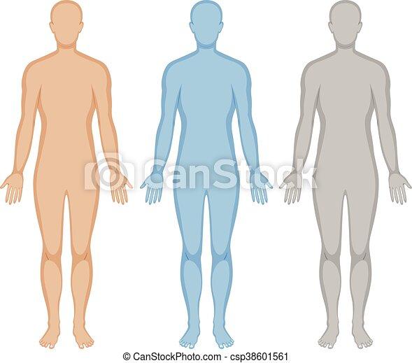 Human Outline Vector Clipart EPS Images 40 215 Human Outline Clip