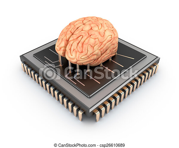 Human brain and computer chip, 3D  - csp26610689