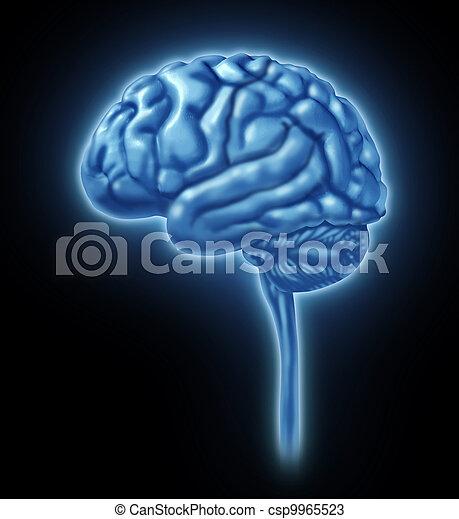 Human Brain Concept - csp9965523