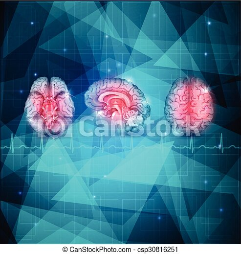 Human brain detailed anatomy from different views abstract human brain detailed anatomy csp30816251 ccuart Choice Image