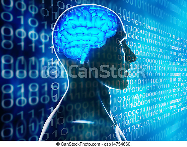 human brain - csp14754660