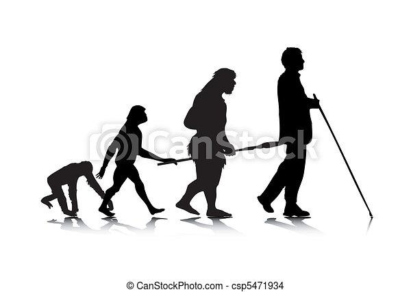 Human Evolution 3 - csp5471934