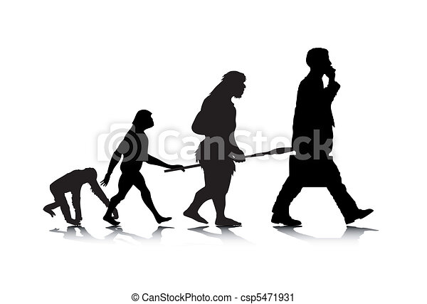 Human Evolution - csp5471931