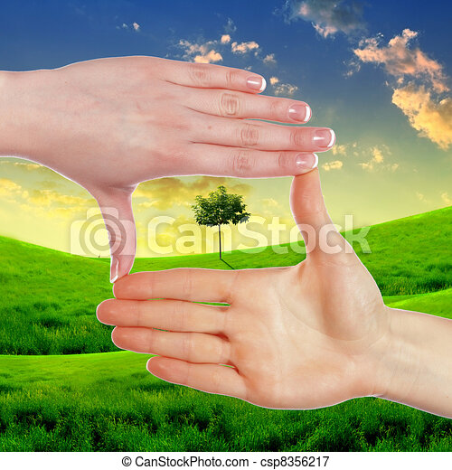 Human hands and green plant - csp8356217