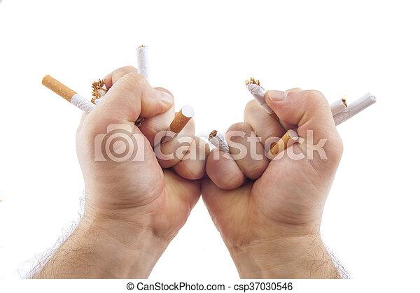 Human hands breaking cigarettes - csp37030546