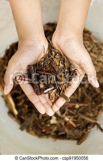 Human hands holding dirt - csp91950056