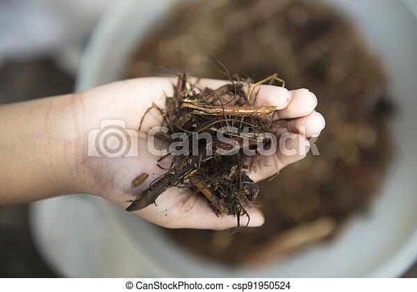 Human hands holding dirt - csp91950524