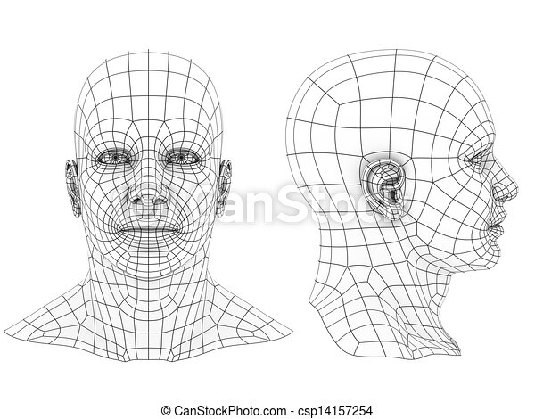 Human head 3d . Human head 3d wireframe front and side view.