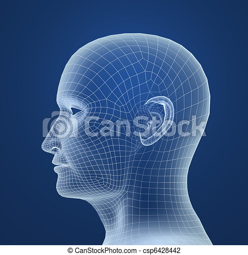 Human head wire model - csp6428442