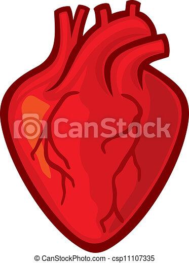 human heart rh canstockphoto com human heart clipart outline human heart clipart outline