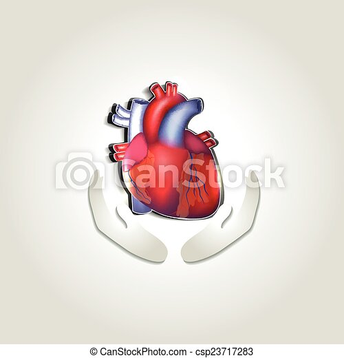 Human heart health care symbol - csp23717283