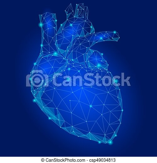 Human Heart Internal Organ Triangle Low Poly  Connected dots blue color  technology 3d model medicine healthy body part vector illustration
