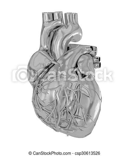 Human heart - csp30613526
