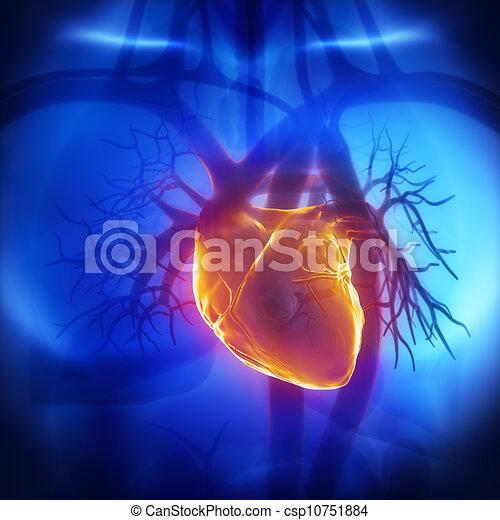 Human herat glowing in chest - csp10751884