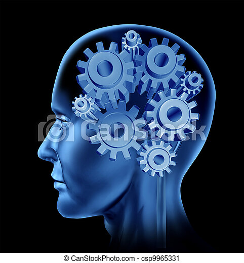 Human Intelligence And Brain Function - csp9965331