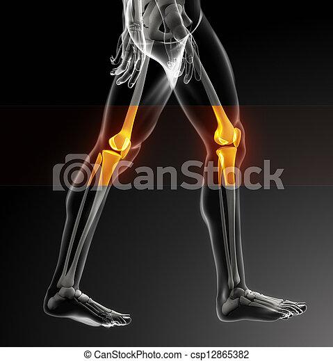 Human knee scan - csp12865382