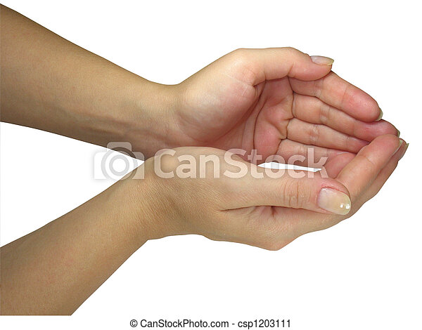 Human lady hands holding your object isolated over white - csp1203111
