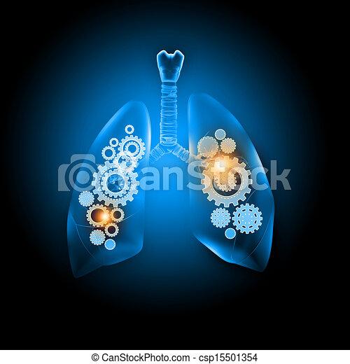 Human lungs - csp15501354