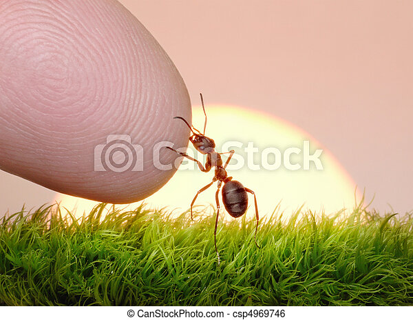 human, nature and ant - finger of friendship - csp4969746