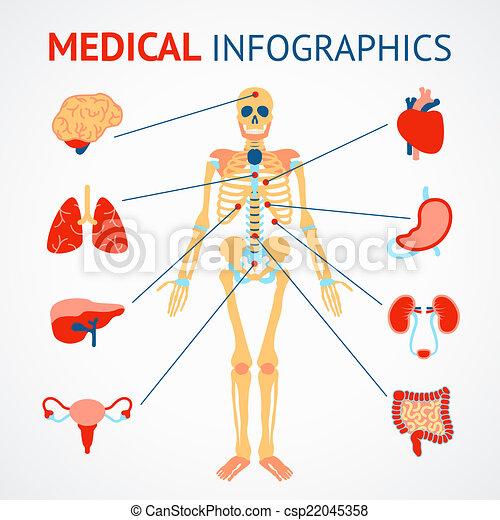 Human Organs Infographic Medical Infographic Set Of Human