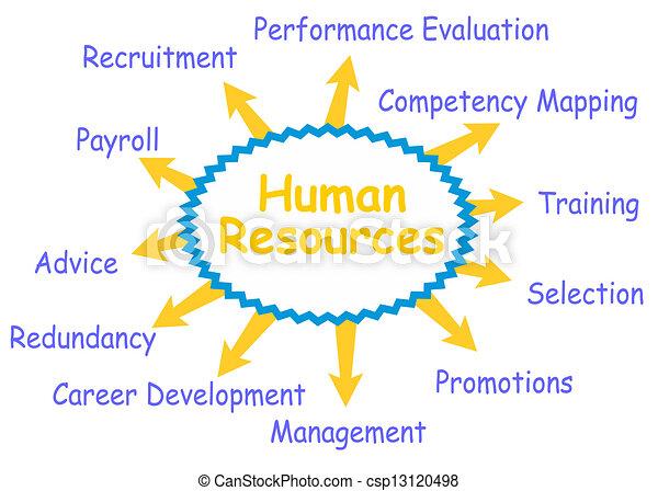 Human resources - csp13120498