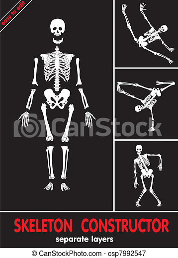 Human skeleton - csp7992547