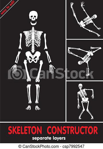 Human skeleton - csp7992547
