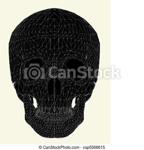 Human Skull - csp5566615