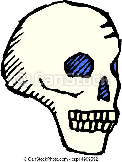 human skull  - csp14909532