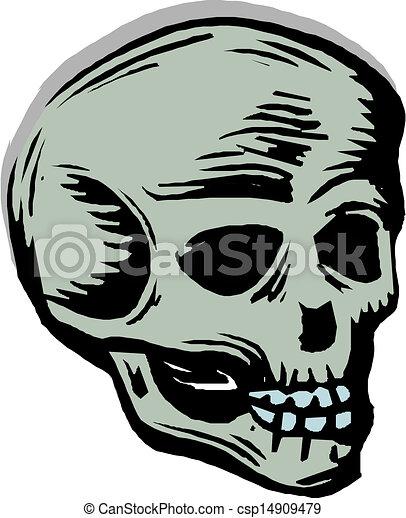human skull  - csp14909479