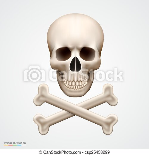 Human skull isolated on white - csp25453299