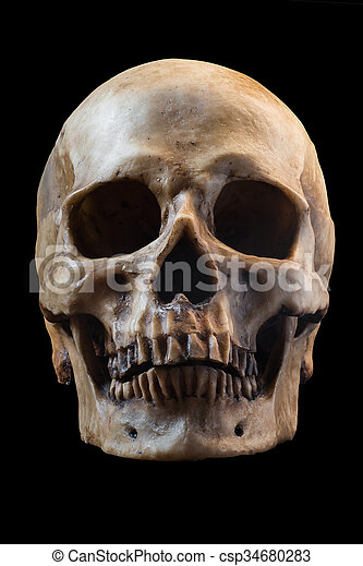 Human Skull On Black Background Terrible Human Skull Pictures