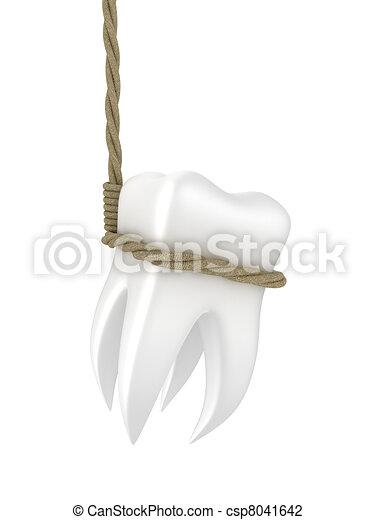 Human tooth - csp8041642