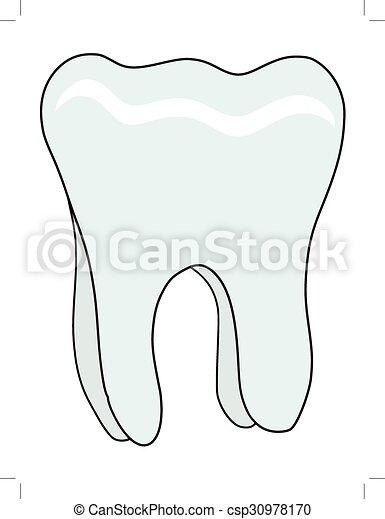 human tooth - csp30978170