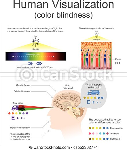 Human Visualization Color blindness. - csp52302774