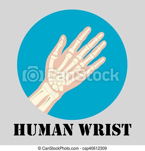 Human wrist emblem - csp40612309