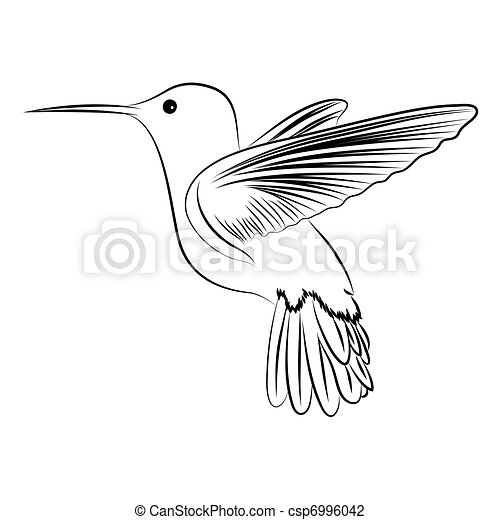 humming, pássaro - csp6996042