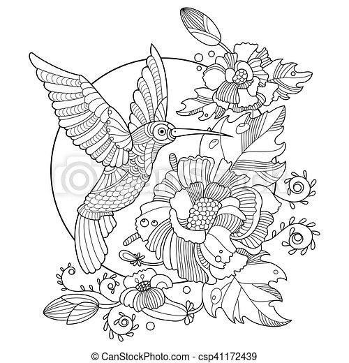 Hummingbird coloring book for adults vector. Hummingbird colibri ...