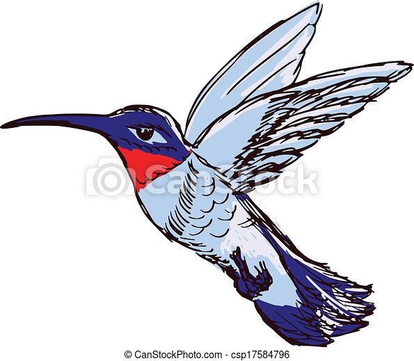 hand drawn sketch cartoon illustration of hummingbird eps vectors