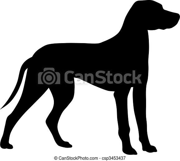 Hund - csp3453437