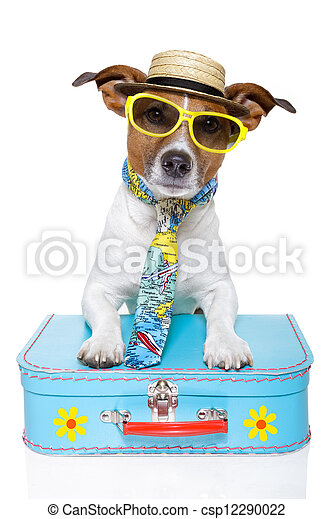 hund, turist, semester - csp12290022
