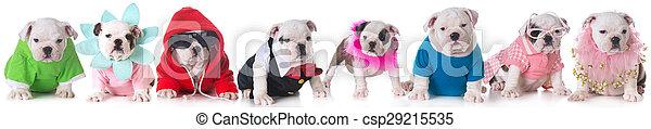 hundebabys, abfall - csp29215535