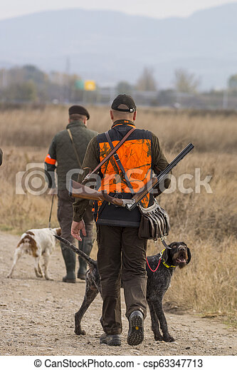 Hunter hunting with dogs in nature - csp63347713