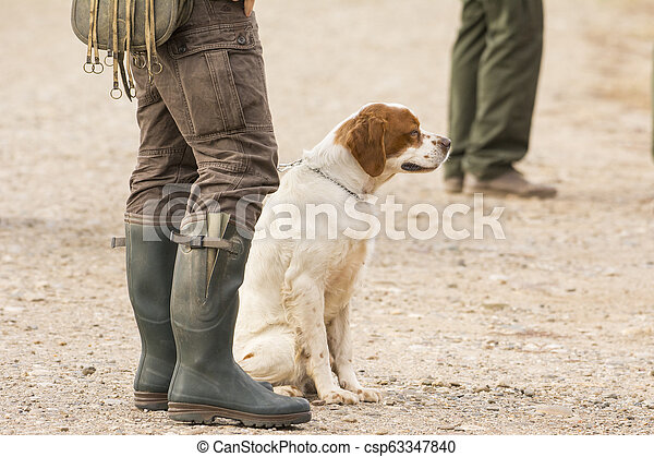 Hunter hunting with dogs in nature - csp63347840
