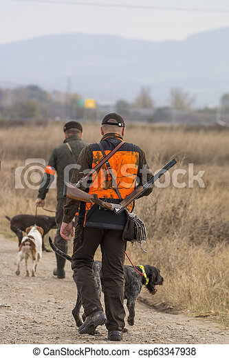 Hunter hunting with dogs in nature - csp63347938