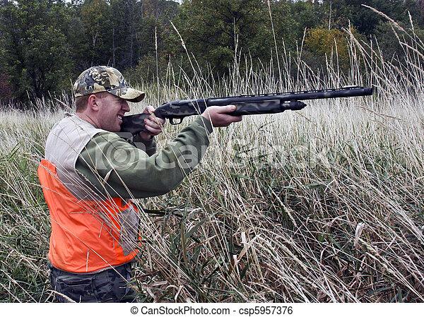 hunter in marsh grass - csp5957376