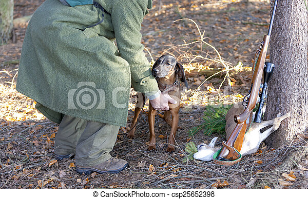 hunting dog with hunter in forest - csp25652398