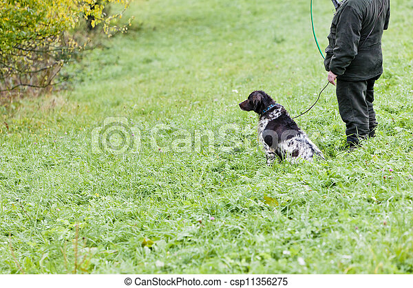 hunting dog with hunter - csp11356275