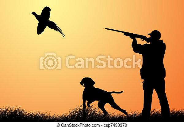 Hunting for a pheasant - csp7430370