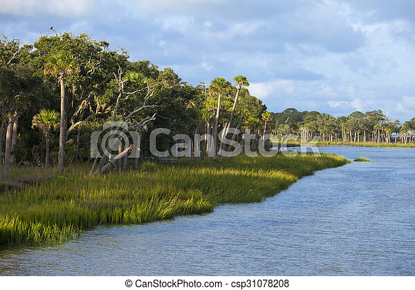 Hunting Island State Park - csp31078208